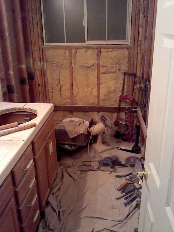 Demolition begins with the existing vanity tile countertop, (4) garden tub, and tile surround. After disposal and cleanup of all the preceding demo work, we assess the existing structure for hidden damages and find everything to be in good order.